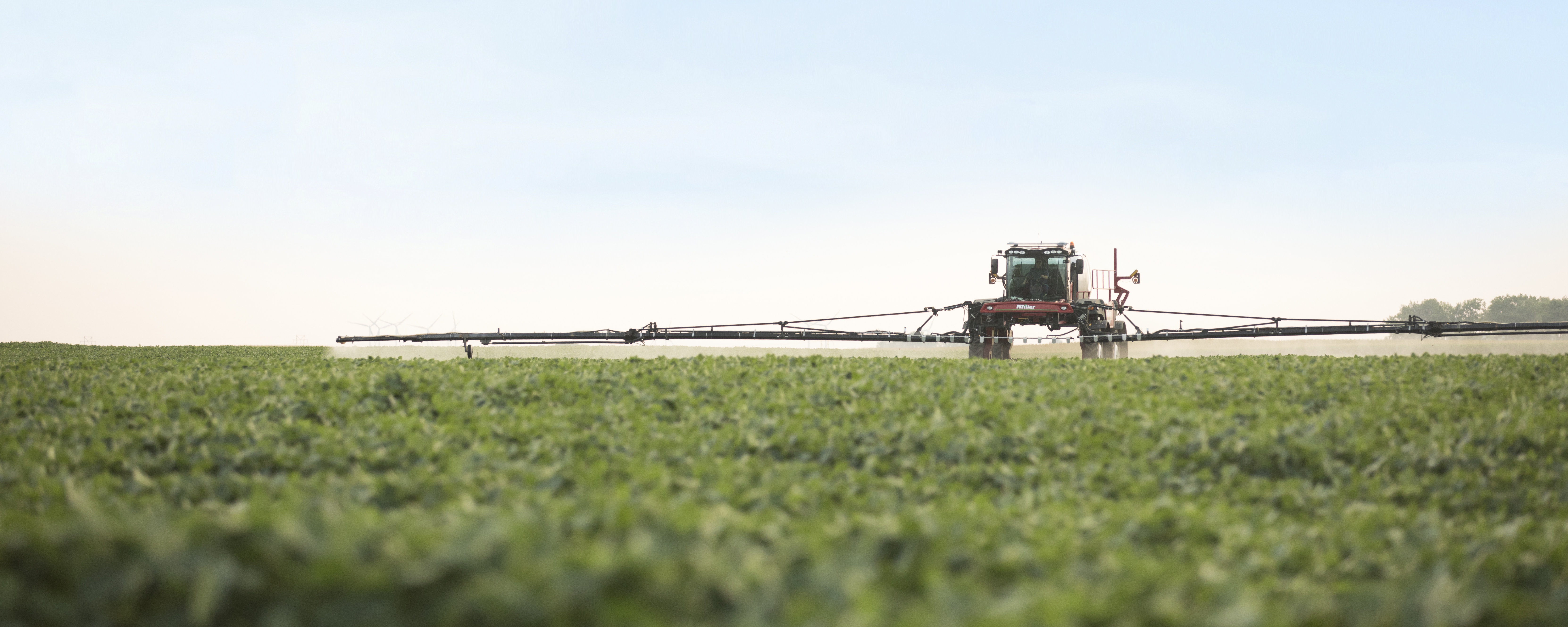 Herbicide Application Timing: When to apply what | Agricultural
